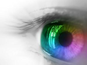 Mieux voir pour bien écrire – le vocabulaire de la vue