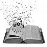Combien de mots doit compter un roman ?